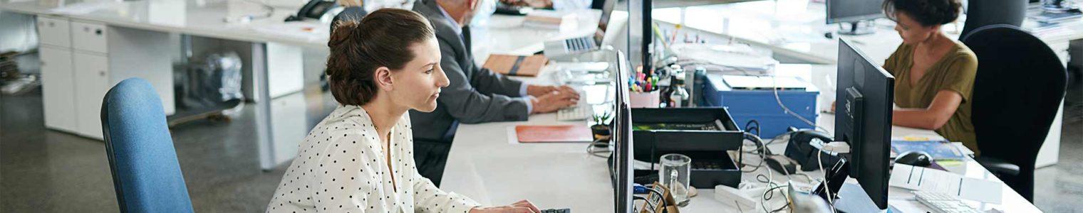 Software und IT-Provider